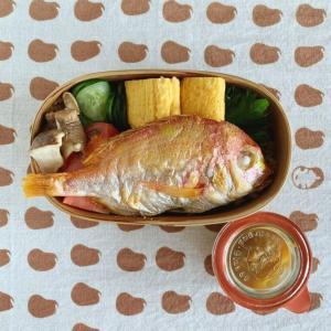 YouTubeをテレビで見れるFireStick届いたのとれんこ鯛塩焼き弁当