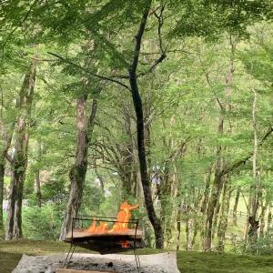 VIP席のキャンプは1泊1000円!