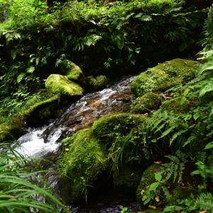9月のできごと~鳥取県~雨滝~