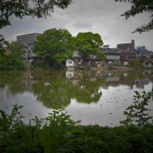 昭和の日(4月29日)の昭和町近辺