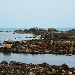 銚子の海2020-0604