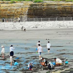 銚子の海2020-0814