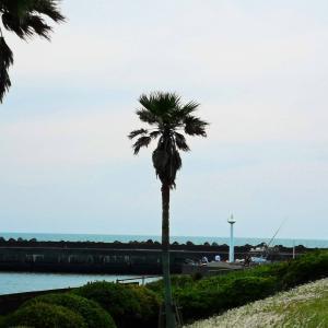 銚子の海2020-0916