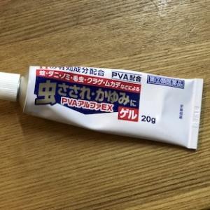 石垣島の皮膚科事情と「ヌカカ」にご用心!