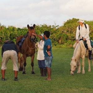 自宅から仕事場まで、馬で!!