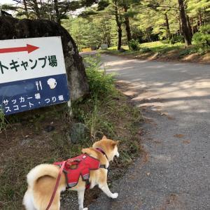 【長野】白馬アルプスオートキャンプ場(設営・場内の様子)