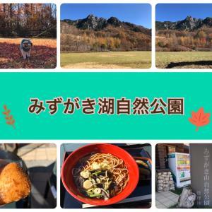 クウちゃんと紅葉ドライブ(みずがき山自然公園)