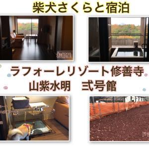 【静岡】ラフォーレリゾート修善寺・山紫水明弐号館に宿泊