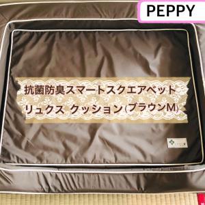 【PEPPY】スクエアベッドリュクス・ブラウンM(10歳になった柴犬さくらへプレゼント)