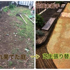 天然芝の張替え作戦決行!(土作りと芝生張り)