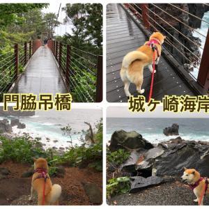 【城ヶ崎海岸】門脇吊橋と遊歩道を少しだけお散歩