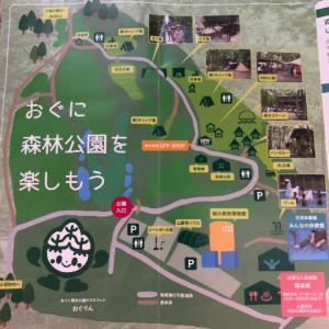 【新潟】おぐに森林公園キャンプ場(場内)