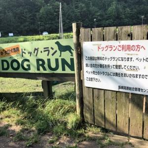 【長野】霊仙寺湖ドッグラン