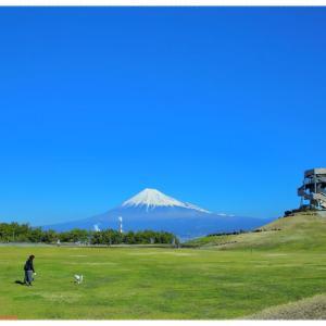 田子の浦みなと公園@富士市