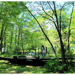 尾白の森名水公園「べるが」@北杜市白州