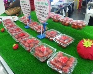 あっちゃんハウス  〜あっちゃんトマトが旅に出る〜