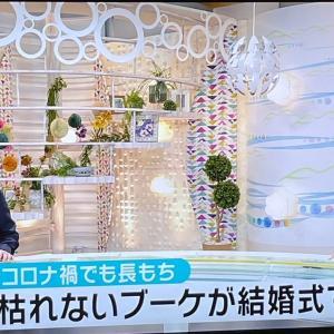 ★【NHK】ON AIR明日です!