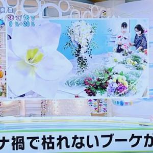 ★【NHK】放送後、嬉しい反響^^☆