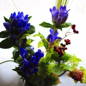 【フラワーセラピー】今すぐ不安な気持ちを解消する「花と香り」