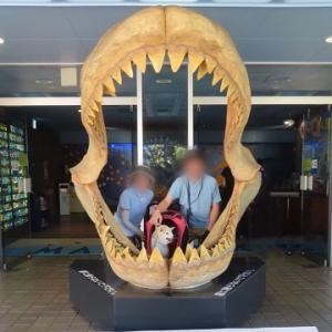 数年ぶりの水族館