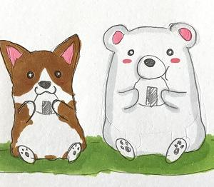 クマとコーギー♪