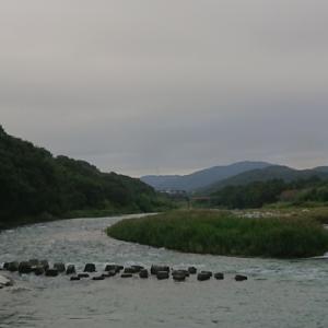 現在の河川状況(荒川玉淀)
