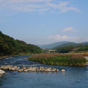 現在の河川状況(荒川玉淀)明日から禁漁