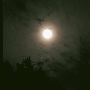 牡羊座満月です