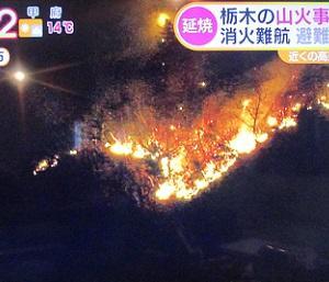 足利 山火事