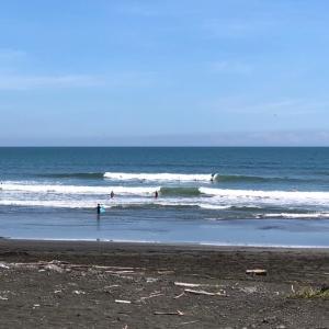ここ最近の波は腰胸サイズでサーフィンできる〜お休みの日には海へ向かいましょう〜♪
