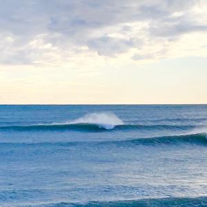 めちゃくちゃ良い波で貸切りサーフィンは寂しい〜日本は夏より冬の方がグッドスウェルが続くからね〜♪