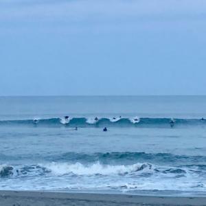 今週末は湘南も千葉も遊べる波が〜今年は波の当たり年てサーフィン絶好調だって〜♪