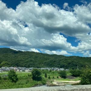 綺麗な空と綺麗な緑をみておもう