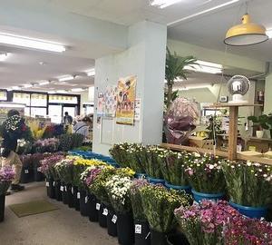 鹿児島市内の就職情報(有限会社 緒方商店 お花・野菜の配送・販売の募集)