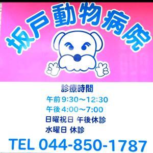 坂戸動物病院さん、ありがとう!!