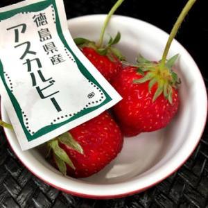 日本からのイチゴ、いろいろ♪