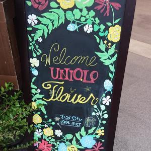知らなかった!ユニクロフラワー〜!!