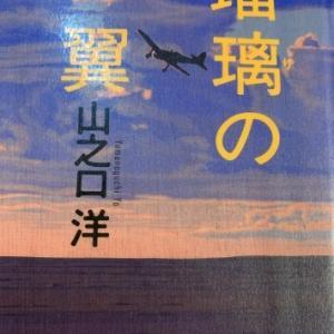 「瑠璃の翼」(読書no.340)