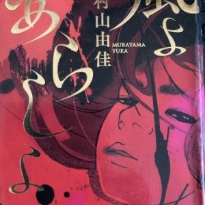 「風よあらしよ」(読書no.348)
