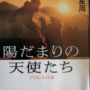 陽だまりの天使たち ソウルメイトⅡ(読書no.360)
