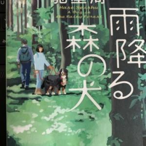 雨降る森の犬(読書no.363)