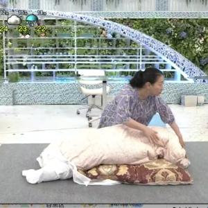 NHK「あさイチ」のワイシャツ布団収納よりコンパクトに! Aさまのすごい収納アレンジ