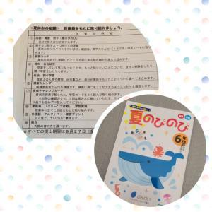 6年生小学校の夏休みの宿題
