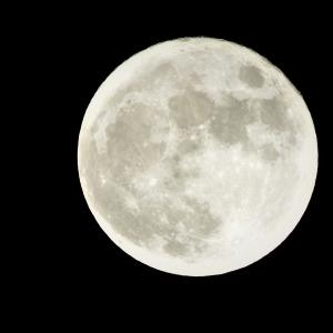 中秋の名月、撮ってみた(笑)