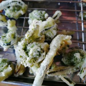山菜の天ぷらと。