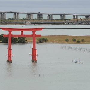 おはよう!南浜名湖 10月19日 舞阪漁港定休漁日 浜名湖にマハゼ