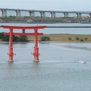 おはよう!南浜名湖 10月20日 舞阪漁港全漁休漁の海  浜名湖ヒラメはじまる