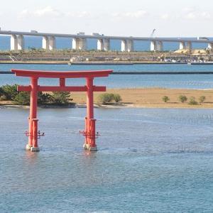 おはよう!南浜名湖 11月16日 舞阪漁港土曜の定休漁日 トラフグの身欠き