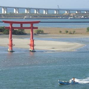 おはよう!南浜名湖 11月19日 雨のち風 舞阪漁港定休漁日、浜名湖にマハゼ