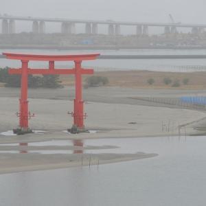 おはよう!南浜名湖 11月22日 明日旗日で舞阪漁港休漁 浜名湖にマハゼ